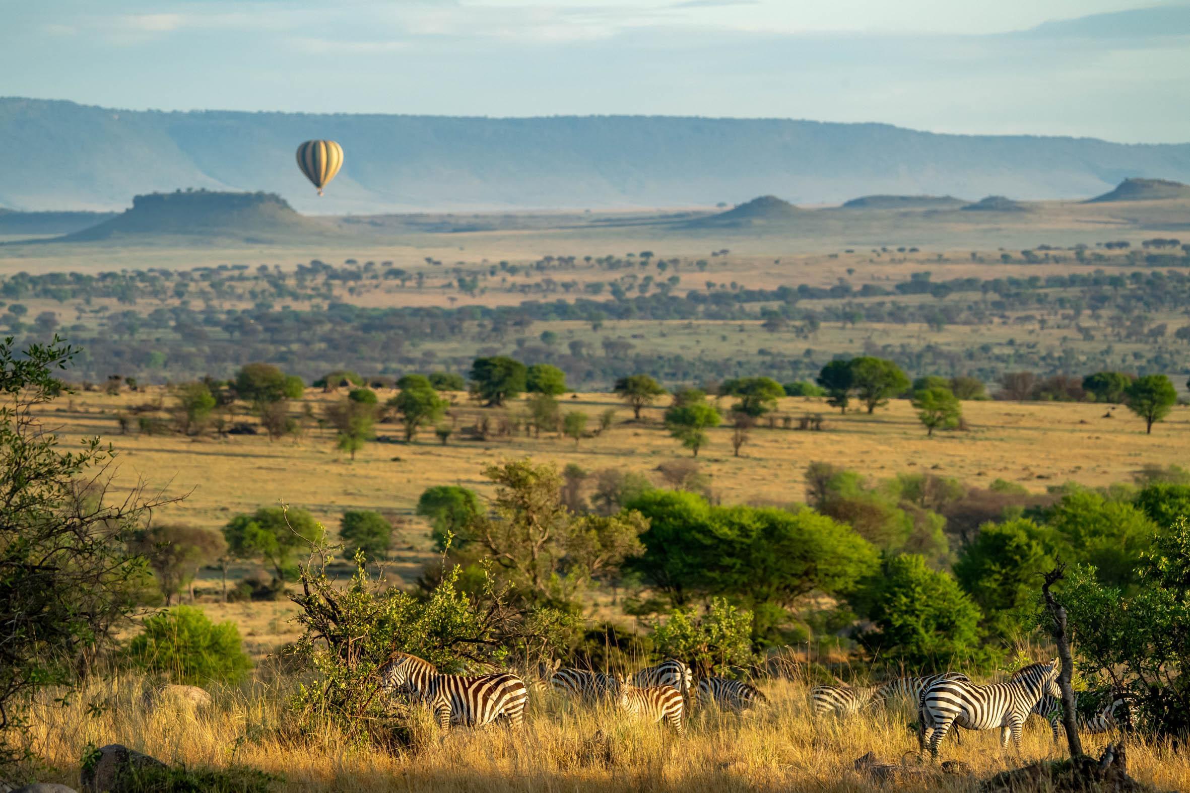 C'est merveilleux de voler dans le Serengeti